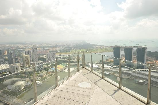 1-Altitude Gallery & Bar: Spectacular view of MBS