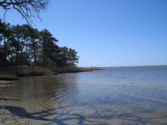 Nags Head Woods Ecological Preserve
