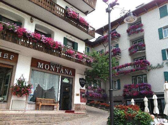 Hotel Montana: Hotel Entrance