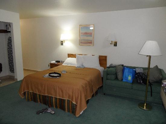 Howard Johnson Express Inn - Roseburg : The bedroom