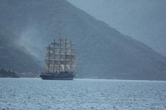 Hotel Pana Kotor: De beaux bateaux à cet endroit
