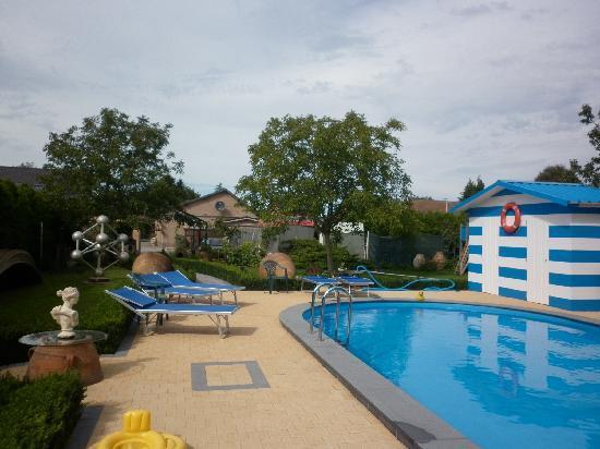 B&B Casa Roman: The pool