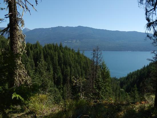 Mountain Trek Fitness Retreat & Health Spa : Photo taken close to the Lodge.