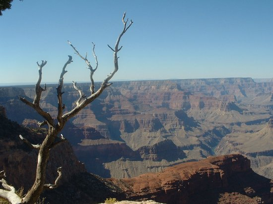 the top 10 things to do near bright angel trail rh tripadvisor com