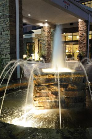 Hilton Garden Inn Cartersville Fountain