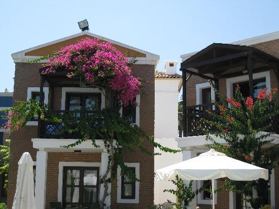 Aldemar Royal Mare Thalasso Resort: So pretty !!