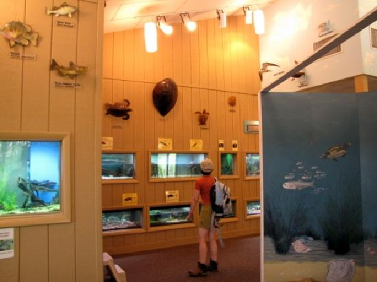 Cattus Island County Park: Inside the Cooper Environmental Center