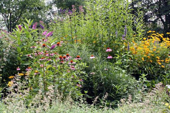 Cattus Island County Park: Inside the Butterfly Garden