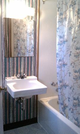 The Mountain View Motel & Cottages: Bathroom, no storage but clean
