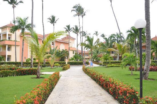 Luxury Bahia Principe Ambar Blue: grounds