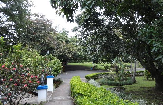 Hotel Aeropuerto Costa Rica: Garden