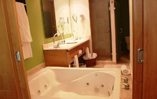 The Grand Mayan at Vidanta Riviera Maya: bathroom