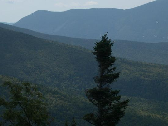 The Mount Washington Cog Railway: beautiful view