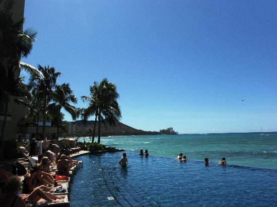 Sheraton Waikiki: View from the pool
