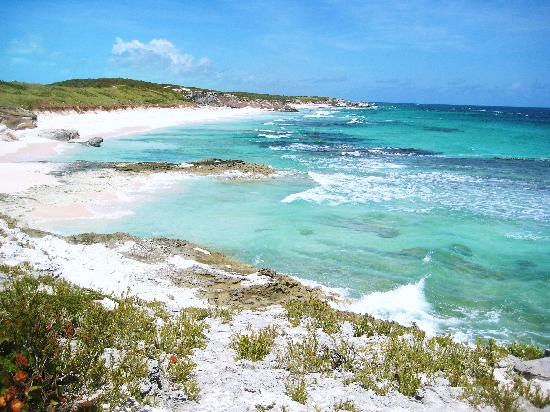 The Bahamian Village: Atlantic side:Just another day at the beach