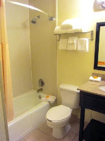 La Quinta Inn & Suites Baltimore South Glen Burnie: Bathroom
