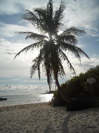 Hotel Riu Palace Paradise Island: so peaceful