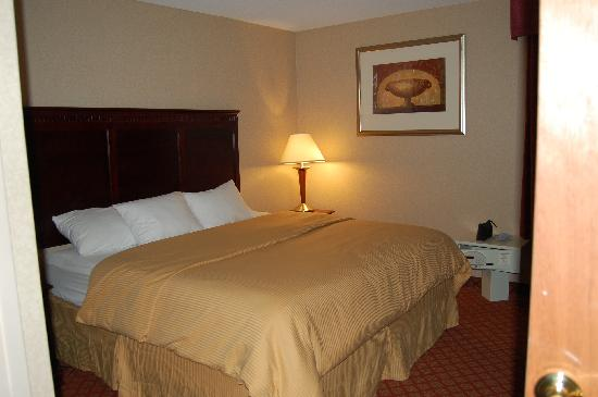 Clarion Inn & Suites Airport: king bedroom of 2 room suite