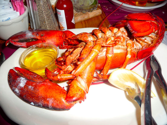 Lavallette, NJ: Steamed Lobster at the Crab's Claw
