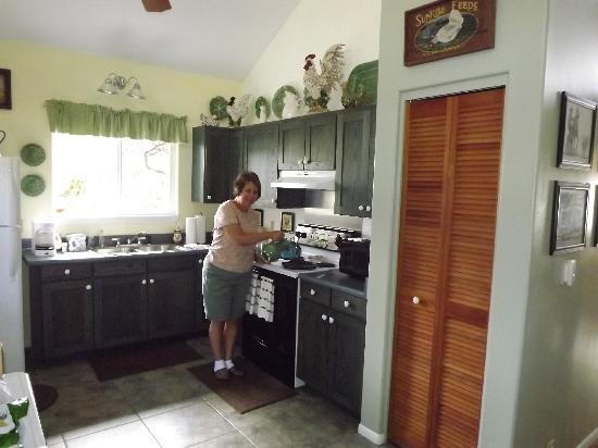 Ohia Plantation House: kitchen, well equipped
