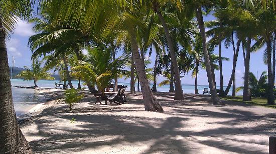 Vahine Island - Private Island Resort: Paradise