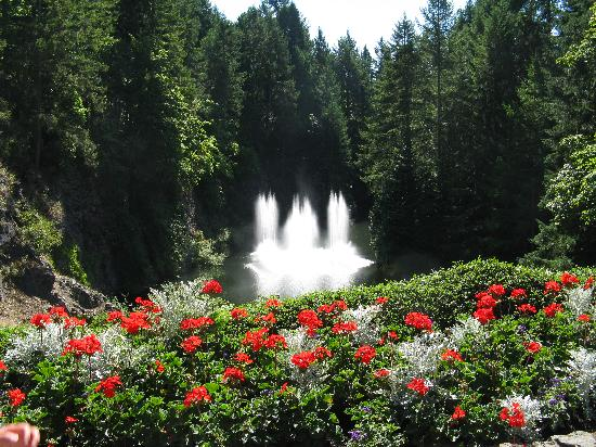 The Butchart Gardens: The fountain and flowers in the Sunken Garden are wonderful
