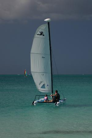 Royal West Indies Resort: Hobie Cat