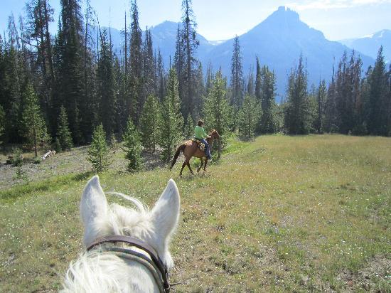 T Cross Ranch: Pack trip views