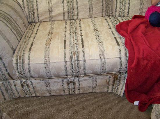 Hilgard House Hotel: Stained Suite Sofa