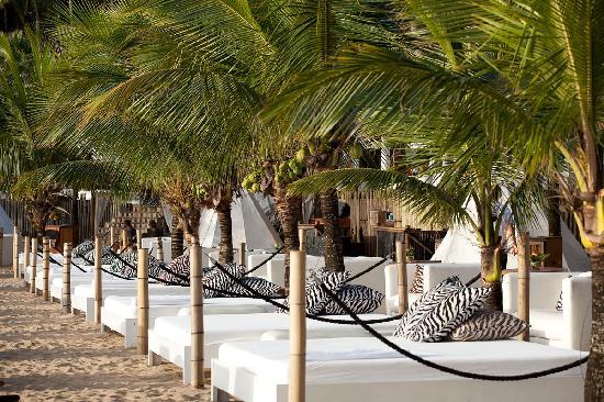 Dpny Beach Hotel Information