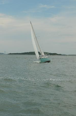 Boston Harbor Islands National Recreation Area : Great for sailboat watching