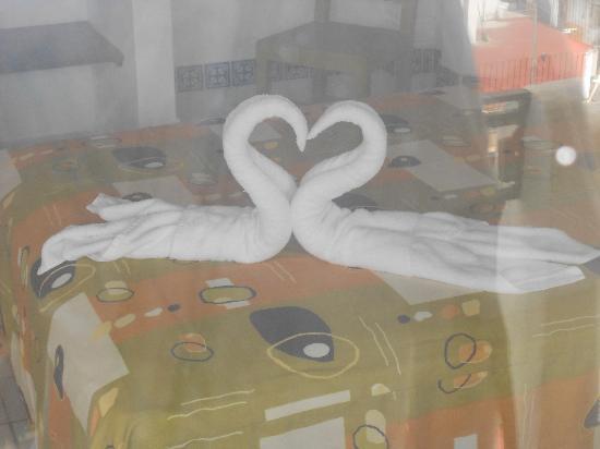 Hotel Hacienda de Vallarta Centro : Creative swan towels daily!