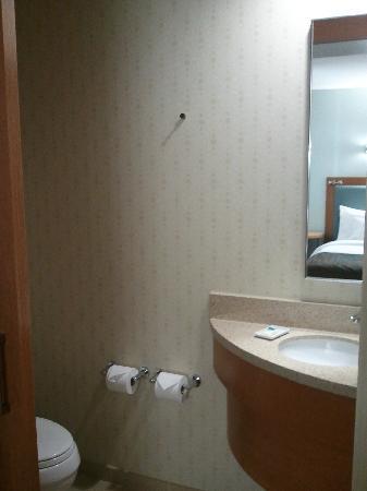 SpringHill Suites Denver at Anschutz Medical Campus : Toilet Room with Corner Sink
