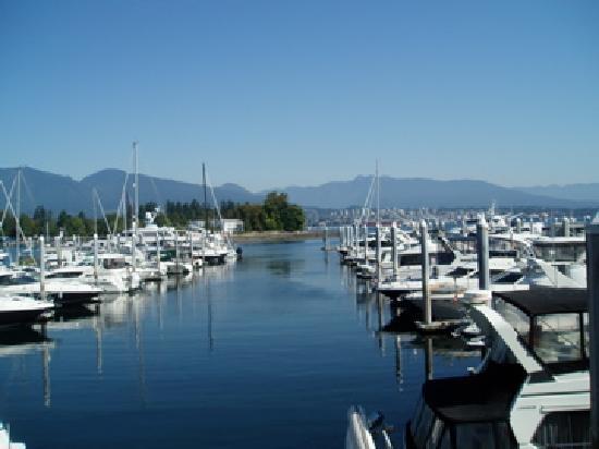 Langley City, Канада: Marina