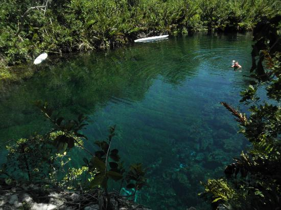 Local Quickies: Cenote
