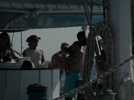 Local Quickies: Catamaran