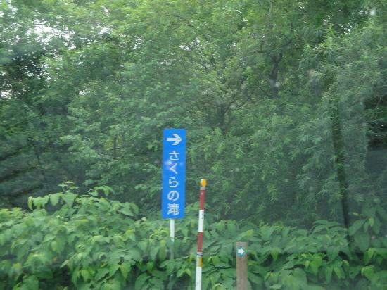 Sakura Falls: さくらの滝 指示牌