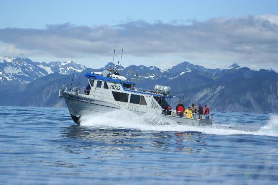 Crackerjack Sportfishing Charters Seward All You Need