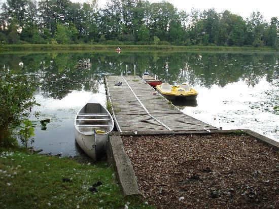 Forest Motel & Woodland Retreat: Beautiful Dock--Swan-Protected Boats