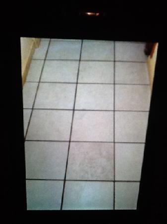 Hotel Porto Real: chao do quarto, no inicio pensei que era sujeira mas depois que a moca voltou ficou exatamente a