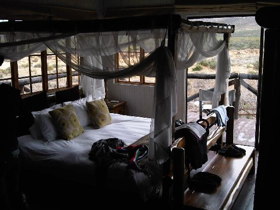 Aquila Private Game Reserve - Day Trip Safari: The four poster bed