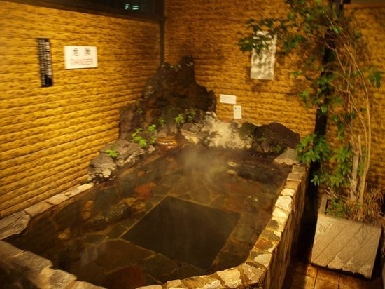 Hotel Edoya: Outdoor Osen