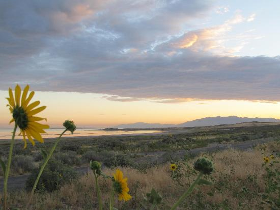 Great Salt Lake: and so quiet