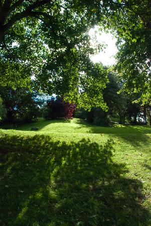 Brandon Hill Nature Park: Amazing colours
