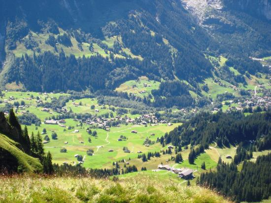 Chalet Hotel Steinbock: View of Grindelwald valley from First