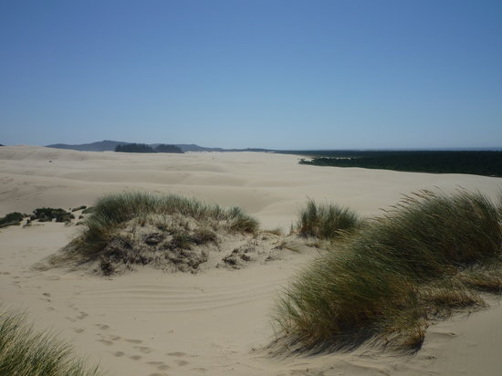 Sand Dunes Frontier: Miles and miles of sand