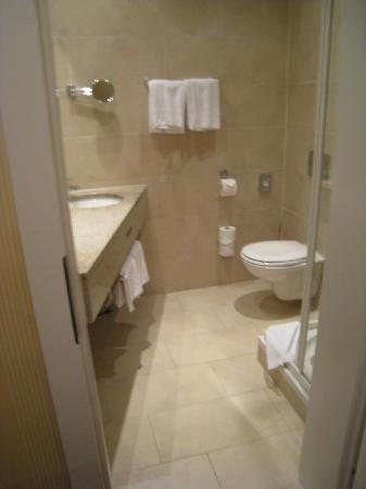 Opera Suites: Bathroom in Room 224 is considerably larger than the one in my room.