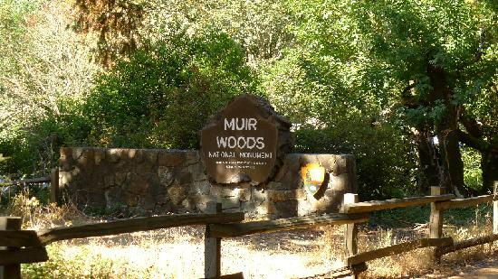 Hotels Near Muir Woods