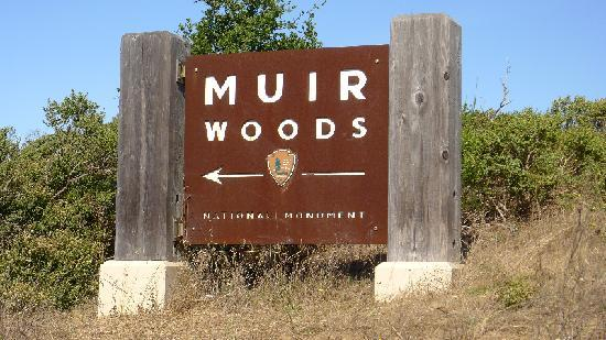 Muir Woods National Monument: Hwy 1 - Turn off sign for Muir Woods
