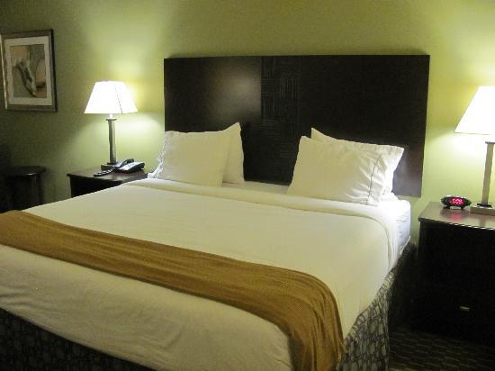 Holiday Inn Express Hotel & Suites Saint Augustine North: King size bed